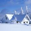 Зимняя викторина