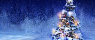 Детская новогодняя викторина «Дед Мороз»