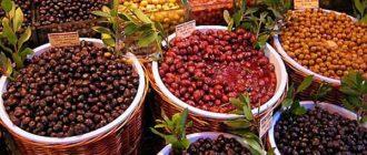 Маслиниада. Викторина на праздник урожая в Черногории