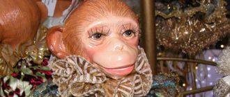 Новогодние викторины - обезьянья викторина