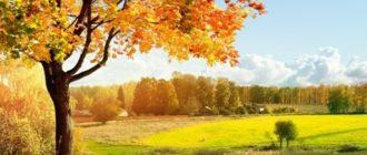 Осенняя викторина с ответами по окружающему миру для начальной школы