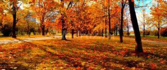 Викторина на тему Осень